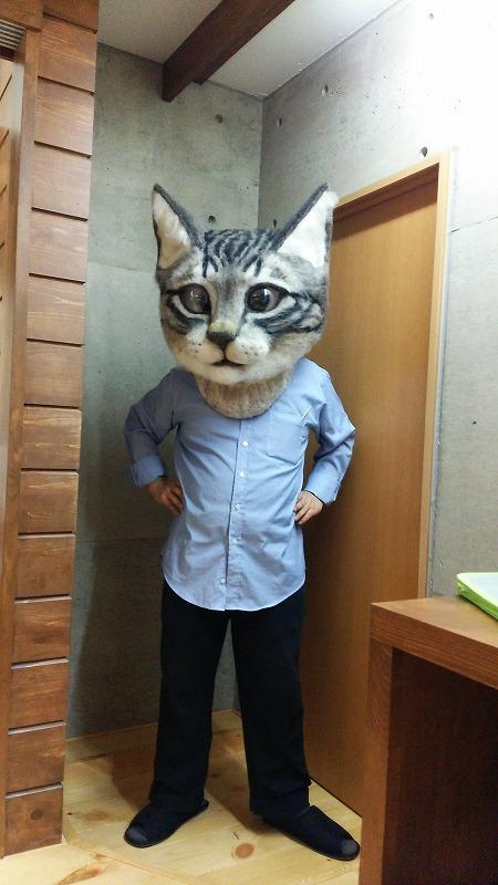 Valtava kissapää!